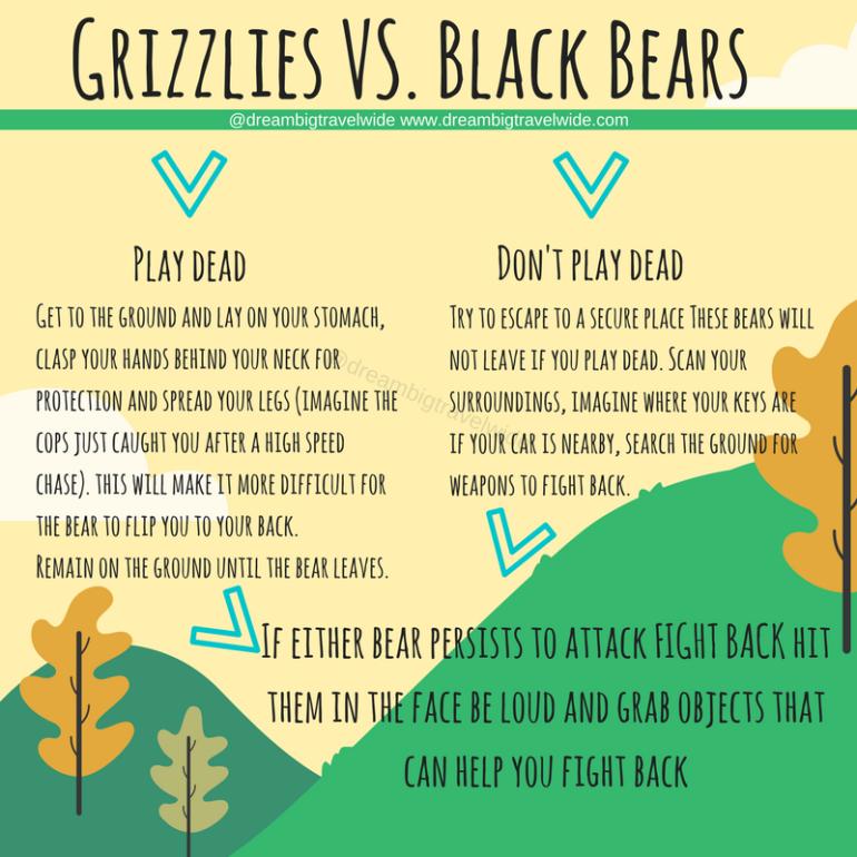 Copy of Grizzlies vs. Blackbears